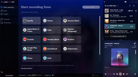 AMU2022_Music_Streaming.png